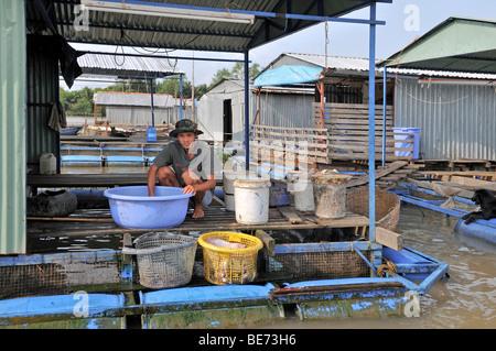 Young man, washing fresh fish on the platform of a floating fish farm, Vinh Long, Mekong Delta, Vietnam, Asia - Stock Photo