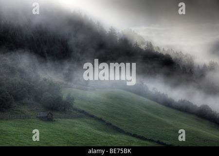 Morning fog near Tamsweg, Lungau, Salzburg state, Salzburg, Austria, Europe - Stock Photo