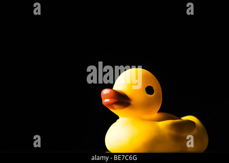 Rubber duck, on black background - Stock Photo