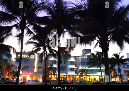 Palm trees in front of illuminated hotels in the evening, Ocean Drive, South Beach, Miami Beach, Florida, USA - Stock Photo