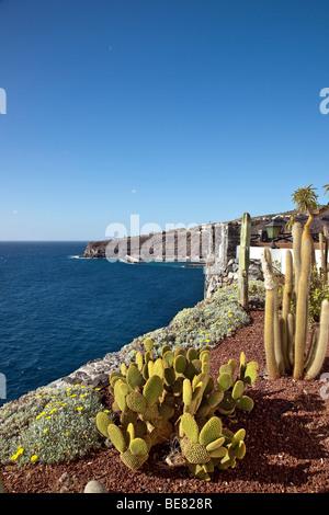 The jardin tecina hotel with sea view in the sunlight for Hotel jardin concha la gomera