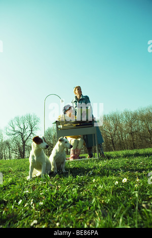 Outdoor office scene, office workers pausing work, looking away, dogs sitting in foreground - Stock Photo