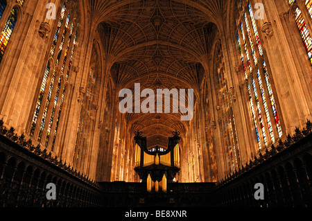 Gothic fan vault with organ and choir of the 'King's College Chapel', founded in 1441 by King Henry VI., King's - Stock Photo