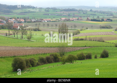 Bocagelandschap met hagen en bomen, Westvlaamse Heuvels, Belgi Bocage landscape with hedges and trees, Belgium - Stock Photo