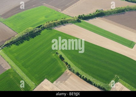 Agricultural area with fields, grasslands and hedges from the air, Belgium - Stock Photo