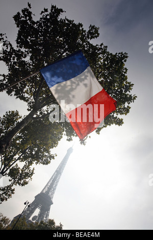 The flag of France with the Eiffel Tower in the background, Paris, France - Stock Photo