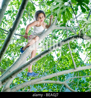 young girl climbing on a fig tree - Stock Photo
