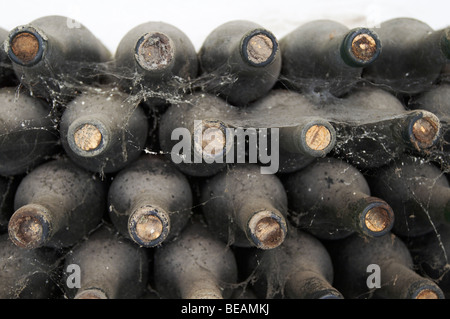 1970 Rosado old bottles in the cellar, Bodegas Otero, Benavente spain castile and leon - Stock Photo