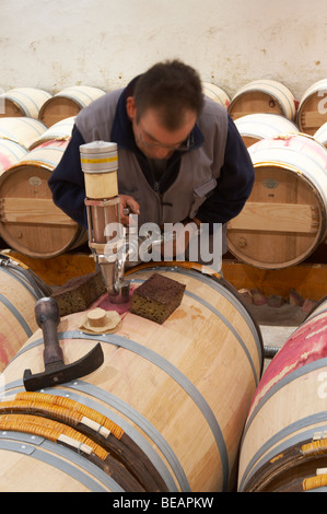 topping up wine barrels ch lafite rothschild pauillac medoc bordeaux france - Stock Photo