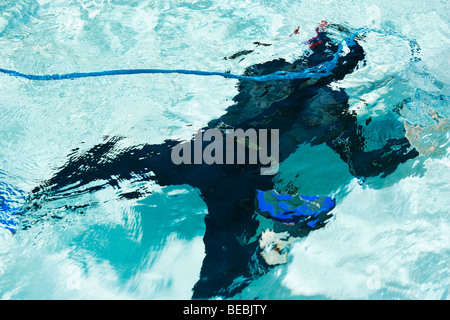 Scuba diver in a swimming pool, Biltmore Hotel, Coral Gables, Florida, USA - Stock Photo