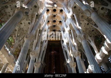 Interior view of Barcelona's Sagrada Família - Stock Photo
