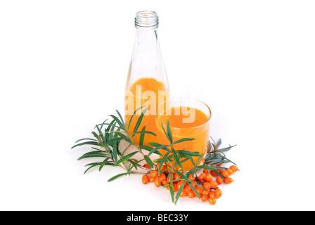 Sanddorn Saft - sallow thorn juice 06 - Stock Photo