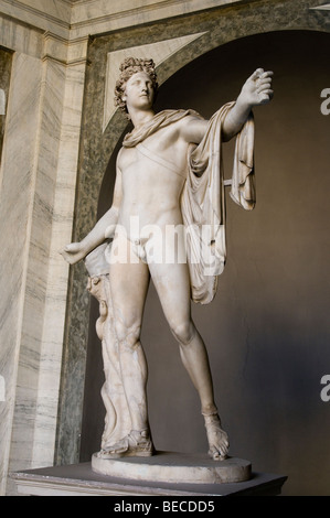 Apollo Belvedere statue is a Roman copy in marble of the Imperial period of a Greek bronze statue.Vatican - Stock Photo