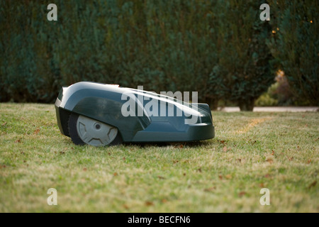 Side view of a green automatic robot lawnmower cutting grass in front of a green hedge - Stock Photo