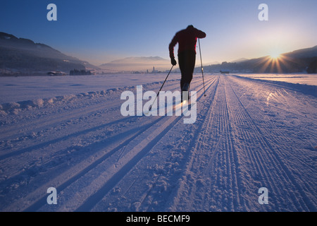 Cross-country skier, Oberndorf, Kitzbuehl Alps, North Tyrol, Austria, Europe - Stock Photo