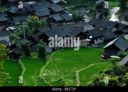 Rice terraces and the village of the Miao Minority, Xijiang, Guizhou, Southern China - Stock Photo
