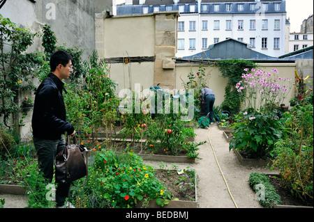 Paris, France - Man Visiting Community Garden in the Le marais Area, (Near the 'Marche des En-fants Rouge') - Stock Photo