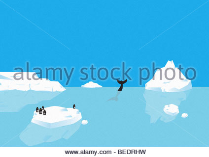 Penguins standing on iceberg, whale diving in distance - Stock Photo