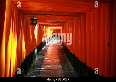 View through the red Tori gates of the Fushimi Inari Taisha shrine in Kyoto, Japan. - Stock Photo