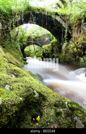 The ancient Roman bridge over the River Machno at Penmachno near Betws y Coed, Snowdonia, North Wales - Stock Photo