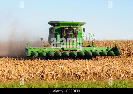 A John Deere combine harvests corn - Stock Photo