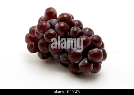 Isabella grape on a white background - Stock Photo