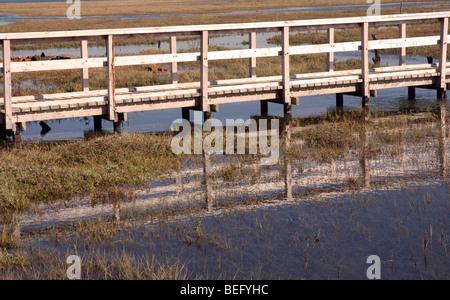 Walkway across Marshlands, Newtown, National Nature Reserve, Shalfleet, Yarmouth, Isle of Wight, England, UK, GB. - Stock Photo