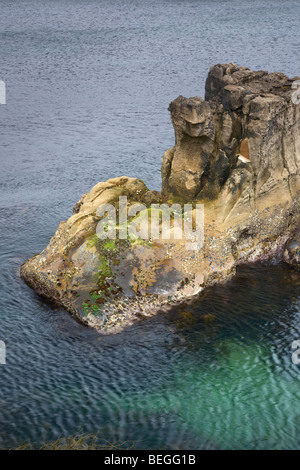 A carving of 'the Priests head' near the Devils Churn at the Pans Rocks on Antrim coast. Northern Ireland. - Stock Photo