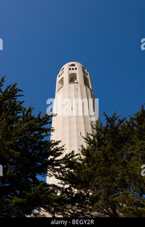 California: San Francisco. Coit Tower, Telegraph Hill. Photo copyright Lee Foster. Photo #: 19-casanf78739 - Stock Photo
