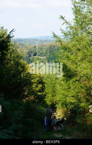 Stock photo of a young family walking along a mountain trail in the plateau des millevaches region of France. - Stock Photo