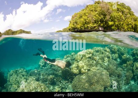 Snorkeler explores shallow Coral Reef, Micronesia, Palau - Stock Photo