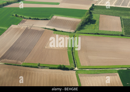 Aerial view over agricultural landscape showing fields, grasslands and hedges, Belgium - Stock Photo