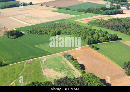 Agricultural area with fields, grasslands forested area and hedges from the air, Belgium - Stock Photo