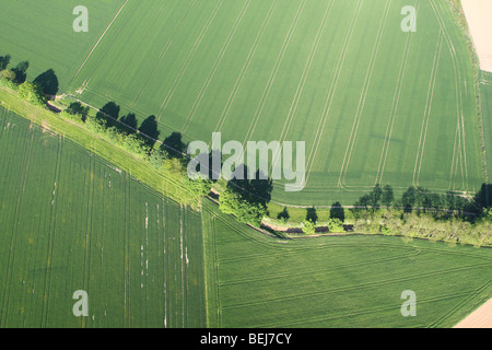 Agricultural area with fields, hedges and grasslands from the air, Belgium - Stock Photo