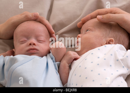 Parents demonstrating containment holding for premature babies, identical twin boys, 11 weeks old, born 10 weeks - Stock Photo