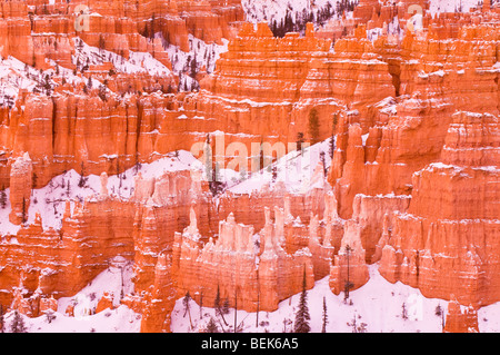 Evening light on snow-dusted rock formations below Sunset Point, Bryce Canyon National Park, Utah - Stock Photo