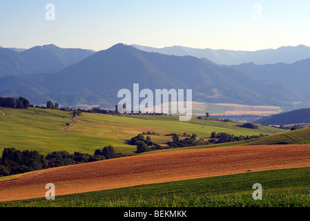 Brown field and green meadows with mountains in background - Stock Photo