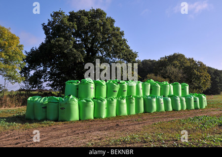 Bagged Biosolids contents derived from sewage by Nutri Bio part of Anglian Water stacked in a farm field - Stock Photo
