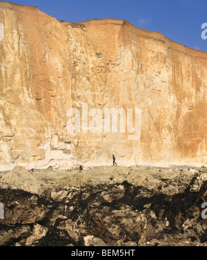 High cliffs at Peacehaven, UK - Stock Photo