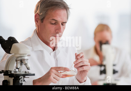 Researchers working in lab - Stock Photo