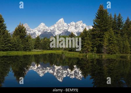Tetons Reflecting in pond, Schwabacher Landing, Grand Teton NP,Wyoming, USA - Stock Photo