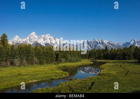 Grand Teton range and beaver dam, Snake River, Grand Teton National Park, Wyoming, USA - Stock Photo
