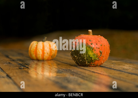 Two pumpkins on a wooden table - Stock Photo