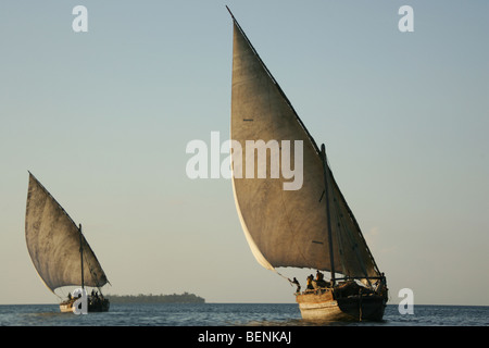 2 Dhows leaving the Stonetown harbour of the island Zanzibar in Tanzania - Stock Photo