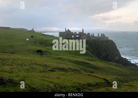 Dunluce Castle, County Antrim, Northern Ireland, UK. - Stock Photo