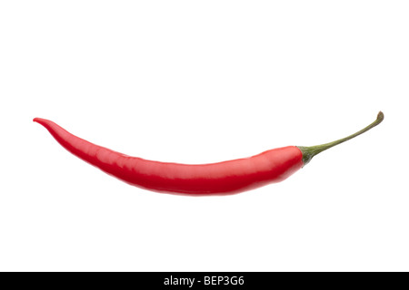 Large red chilli cut out against white background including clipping path - Stock Photo