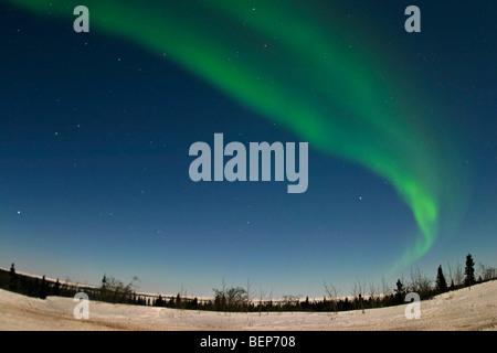 Northern lights, aurora borealis, shine green above the tundra of northern Manitoba during a frigid February. - Stock Photo