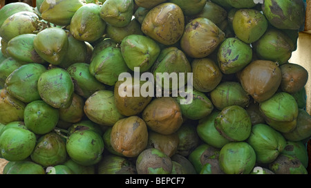 large stack of coconuts - Stock Photo