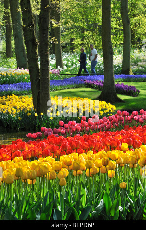 Tourists walking among colourful tulips, hyacinths and daffodils in flower garden of Keukenhof, the Netherlands - Stock Photo