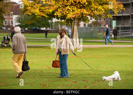 middle aged couple Walking a dog on a long lead in the cathedral close at salisbury - Stock Photo